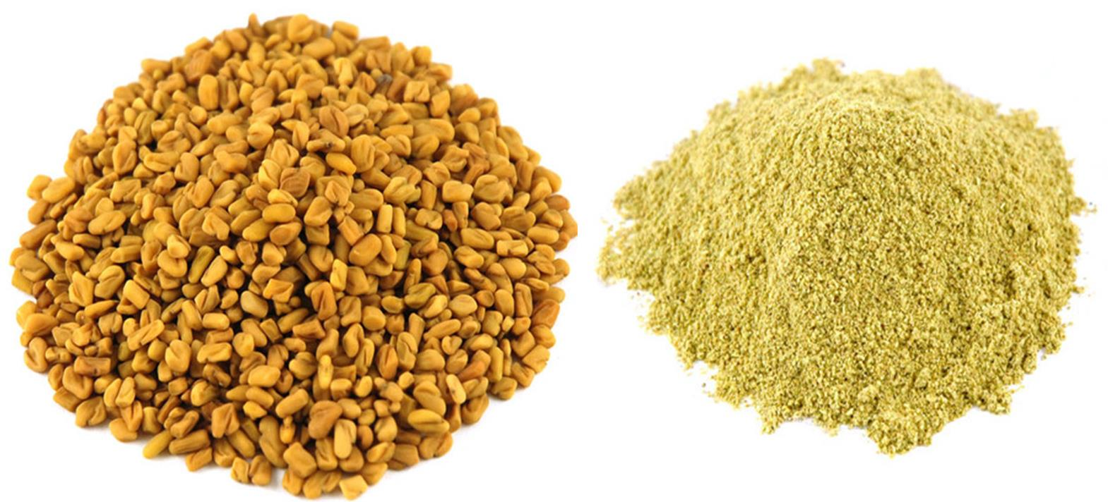 FENUGREEK SEED POWDER - Daulos Organic Products